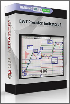 BWT Precision Indicators 2 (05.2009)