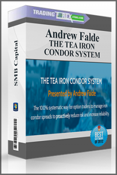 THE TEA IRON CONDOR SYSTEM
