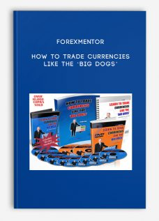 Forexmentor – HOW TO TRADE CURRENCIES LIKE THE 'BIG DOGS'