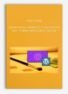 Give Your WordPress Website a Makeover: Divi Theme Spotlight (2015)