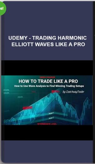 Udemy - Trading Harmonic Elliott Waves like a PRO ...